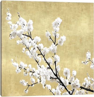 Blossoms on Gold I Canvas Art Print