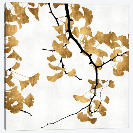 Ginkgo In Gold II Canvas Print #KAB4} by Kate Bennett Canvas Art