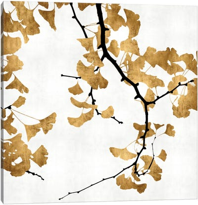 Ginkgo In Gold II Canvas Art Print