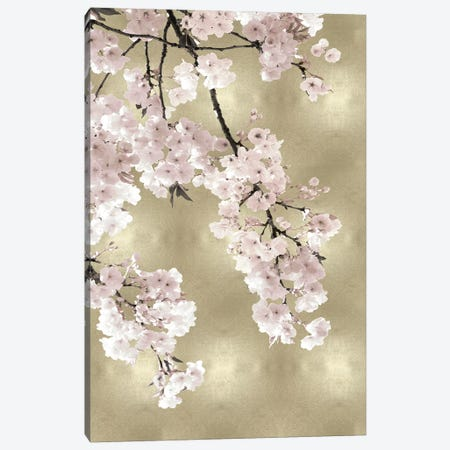 Pink Blossoms on Gold I Canvas Print #KAB50} by Kate Bennett Canvas Art