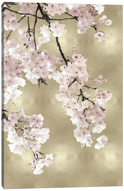 Pink Blossoms on Gold I Canvas Art Print