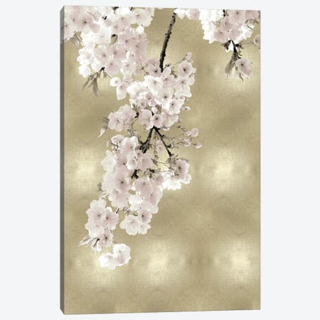 Pink Blossoms on Gold II Canvas Print #KAB51} by Kate Bennett Canvas Artwork