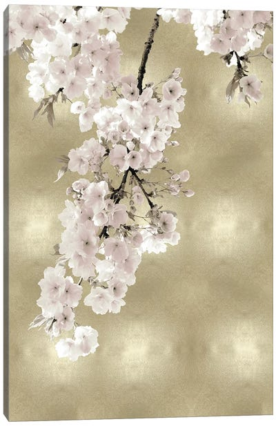 Pink Blossoms on Gold II Canvas Art Print