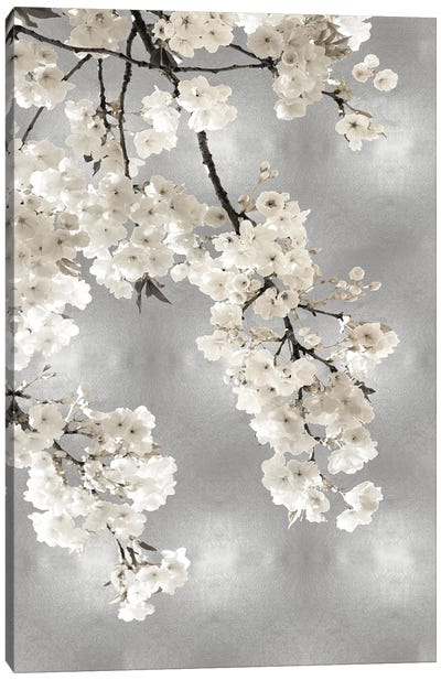 White Blossoms on Silver I Canvas Art Print