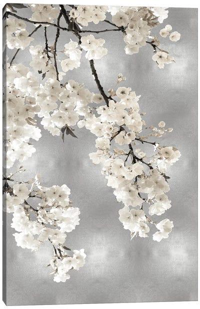 White Blossoms on Silver I Canvas Art Print