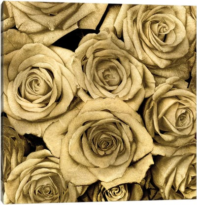 Gold Roses Canvas Art Print