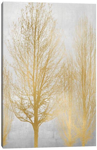 Gold Tree Panel I Canvas Art Print