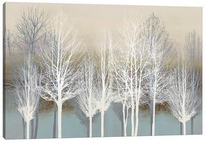 Trees On Aqua Canvas Art Print