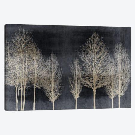 Trees On Dark Gray Canvas Print #KAB89} by Kate Bennett Canvas Art Print