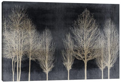 Trees On Dark Gray Canvas Art Print