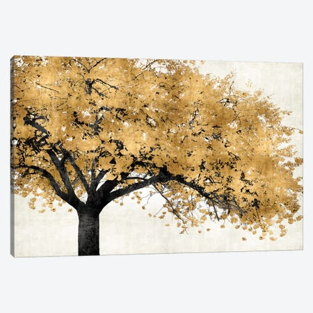 Golden Blossoms Canvas Print #KAB8} by Kate Bennett Art Print