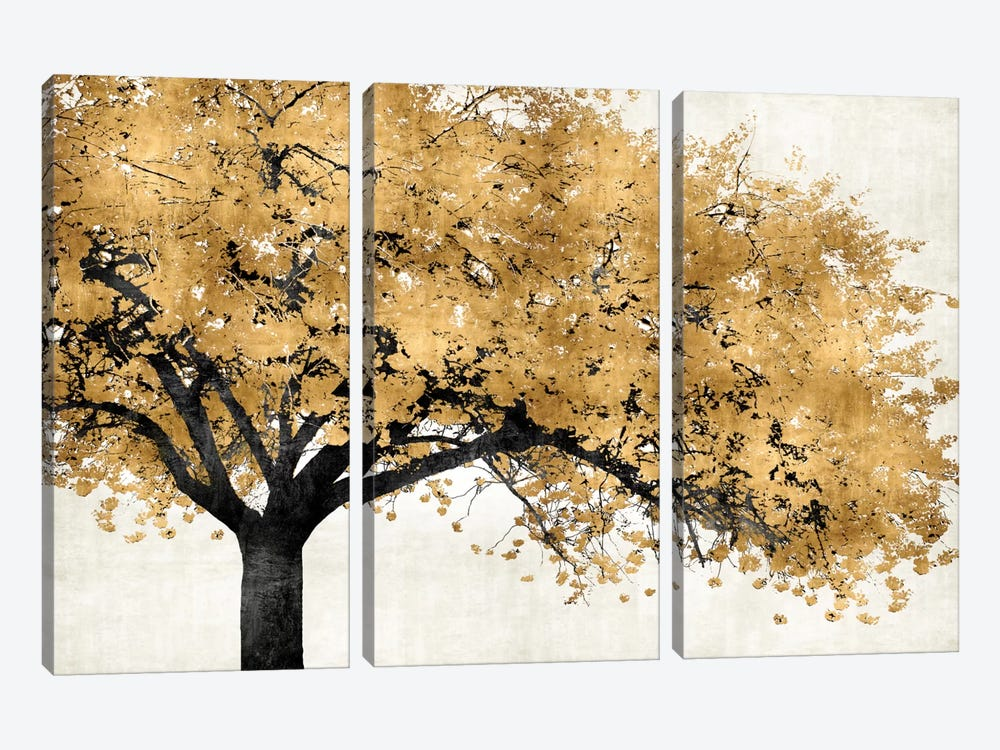 Golden Blossoms by Kate Bennett 3-piece Canvas Print