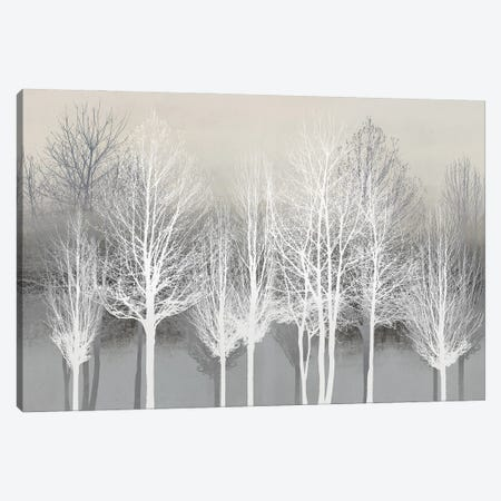 Trees On Gray Canvas Print #KAB92} by Kate Bennett Canvas Wall Art