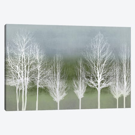 Trees On Green Canvas Print #KAB93} by Kate Bennett Canvas Artwork