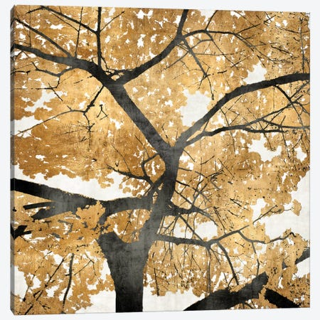 Golden Leaves Canvas Print #KAB9} by Kate Bennett Canvas Art Print