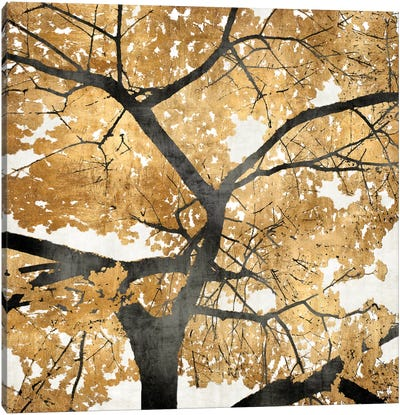 Golden Leaves Canvas Print #KAB9