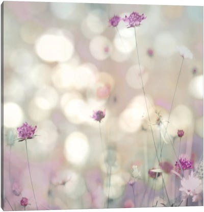 Floral Meadow I Canvas Art Print