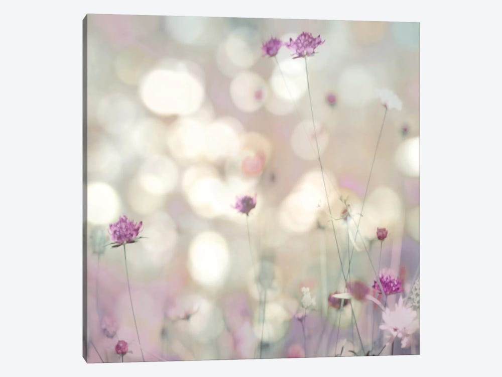 Floral Meadow I by Kate Carrigan 1-piece Canvas Artwork