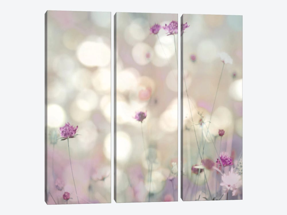 Floral Meadow I by Kate Carrigan 3-piece Canvas Art