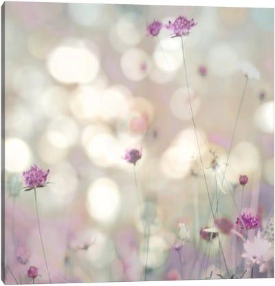 Floral Meadow I Canvas Art Print