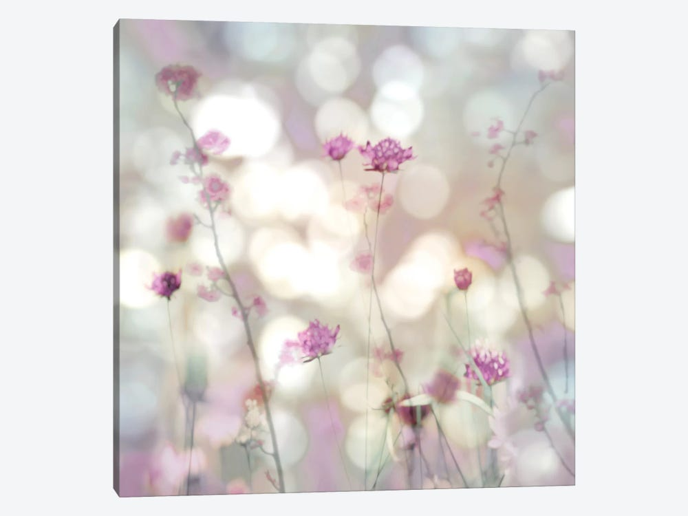 Floral Meadow II by Kate Carrigan 1-piece Canvas Print