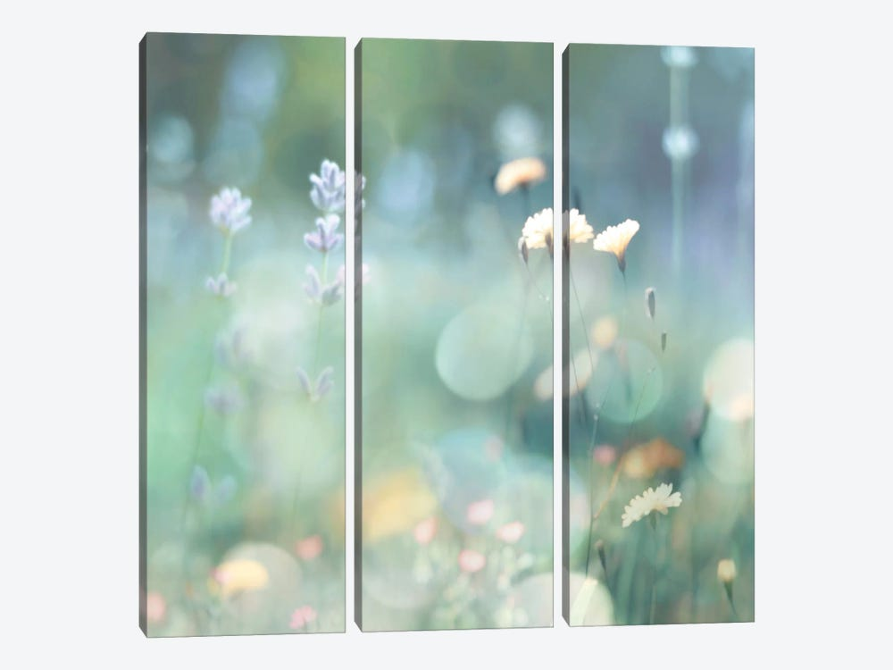 Morning Meadow I by Kate Carrigan 3-piece Art Print