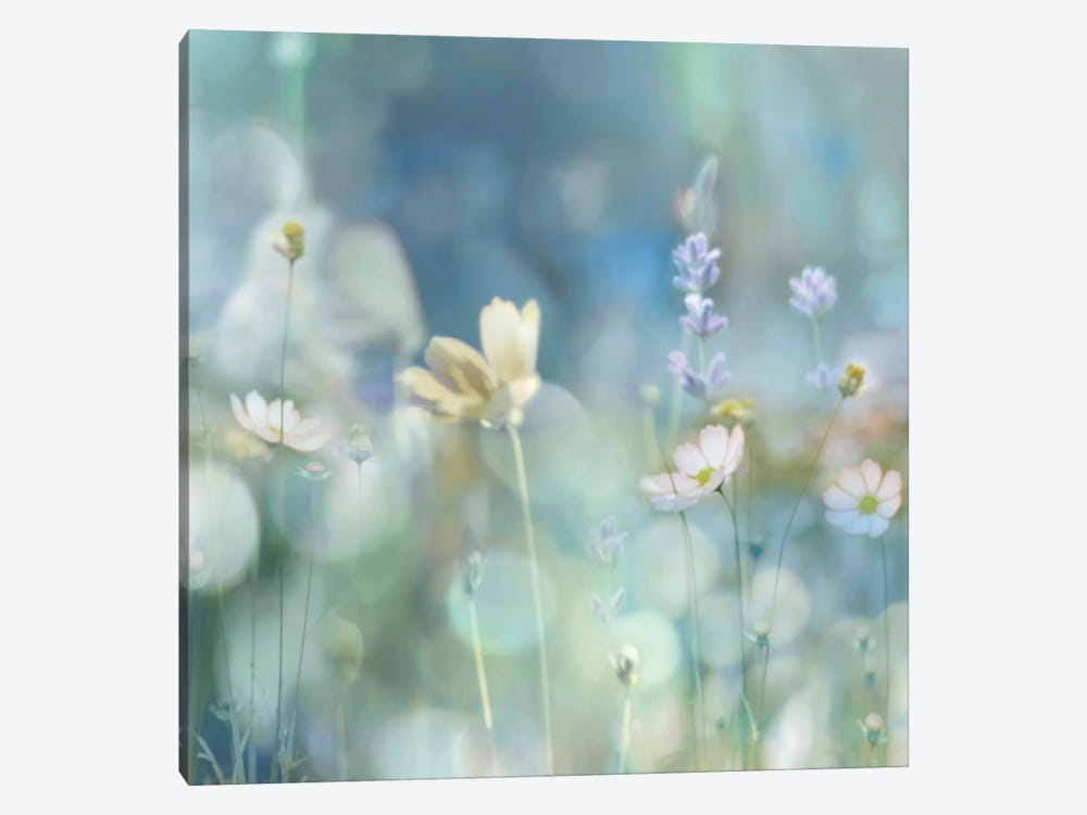 Morning Meadow II by Kate Carrigan 1-piece Canvas Print