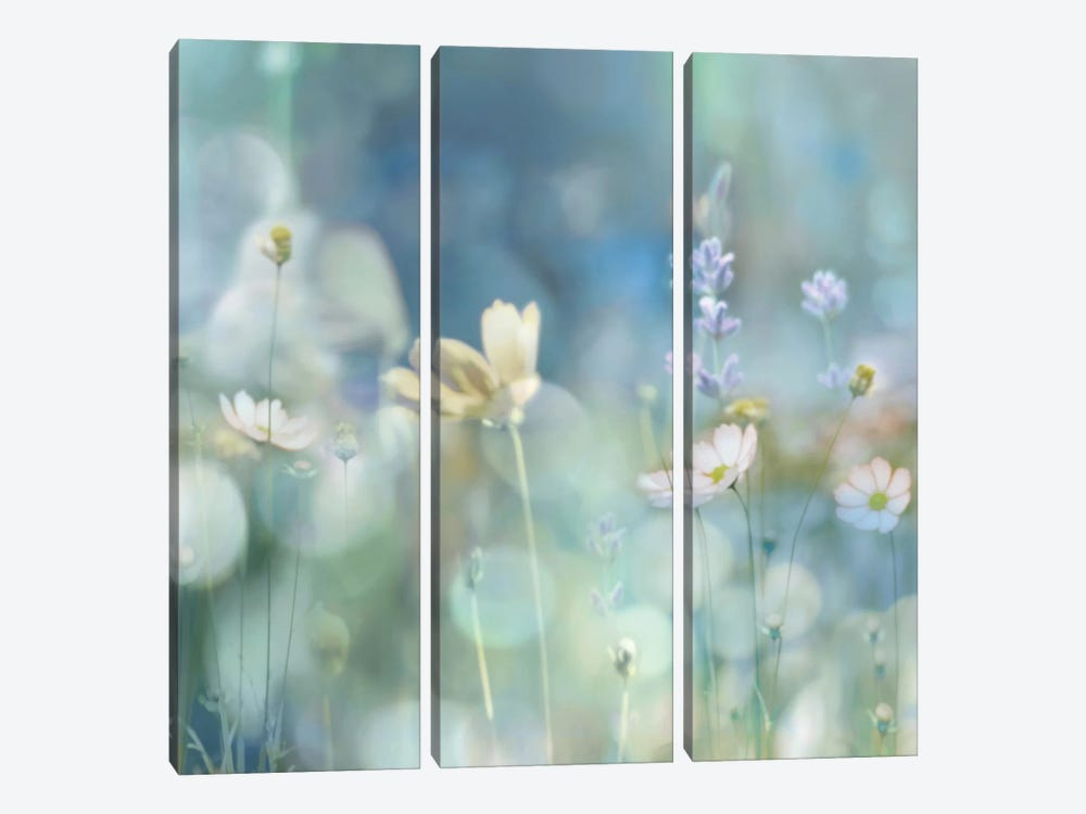 Morning Meadow II by Kate Carrigan 3-piece Canvas Art Print