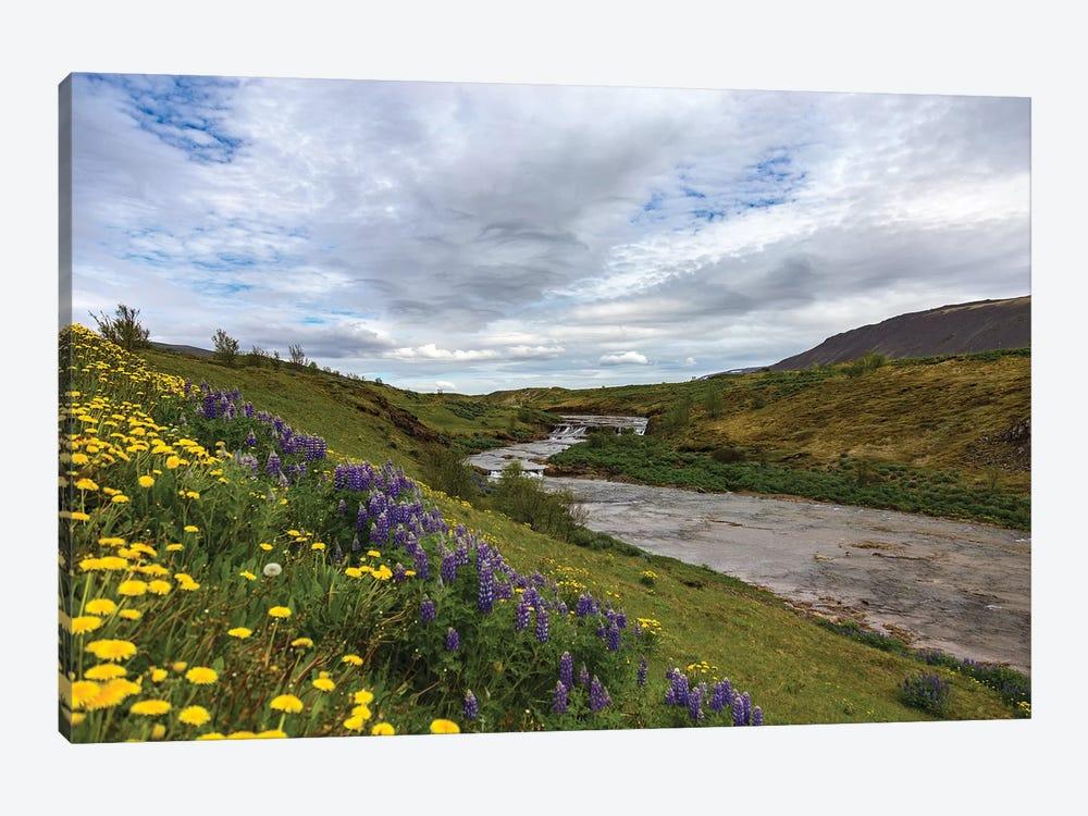 Midnight In Iceland by Sarah Kadlecek 1-piece Canvas Wall Art