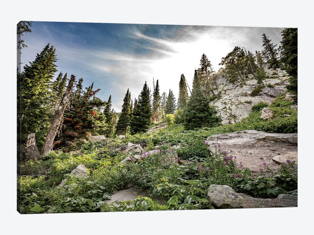 Montana Moment by Sarah Kadlecek 1-piece Canvas Art Print