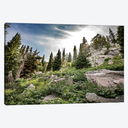Montana Moment Canvas Print #KAD19} by Sarah Kadlecek Canvas Art