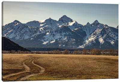 Road To The Tetons Canvas Print #KAD22