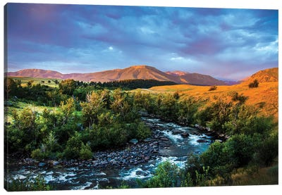 Roscoe Montana Canvas Art Print