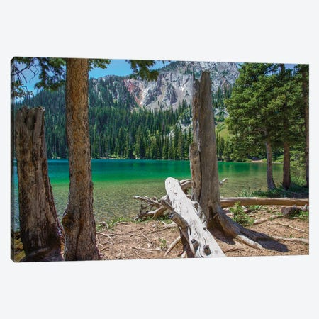 Fairy Lake Canvas Print #KAD52} by Sarah Kadlecek Canvas Wall Art