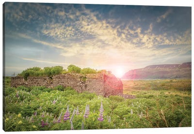Iceland Countryside Canvas Art Print