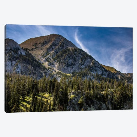 Bridgers Canvas Print #KAD5} by Sarah Kadlecek Canvas Artwork
