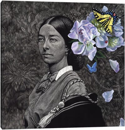 With Only Butterflies To Brood Canvas Art Print