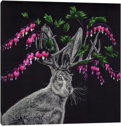 Bleeding Heart Jackalope Canvas Art Print