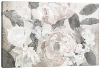 Peony And Sage Canvas Art Print