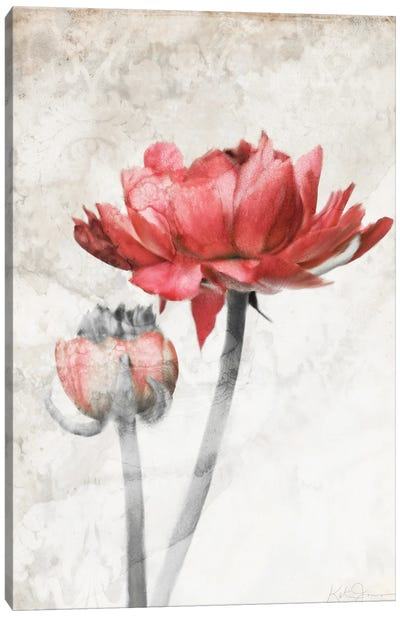 Ravishing Red Bloom Canvas Art Print