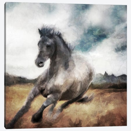 Running Wild Canvas Print #KAJ114} by Katrina Jones Art Print