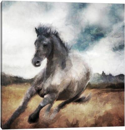 Running Wild Canvas Art Print