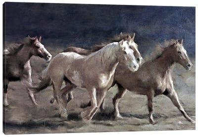 Midnight Run Canvas Art Print
