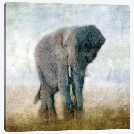 Serengeti Series Elephant Canvas Print #KAJ116} by Katrina Jones Canvas Print