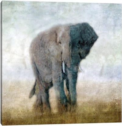 Serengeti Series Elephant Canvas Art Print