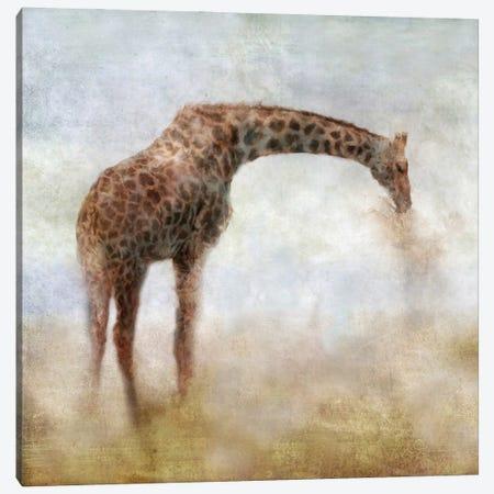 Serengeti Series Giraffe Canvas Print #KAJ117} by Katrina Jones Canvas Art Print