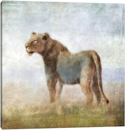 Serengeti Sereies Lioness Canvas Art Print
