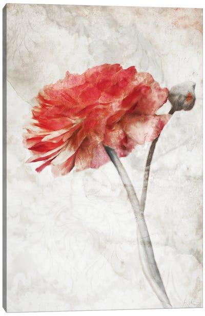 Striking Scarlet Blossom Canvas Art Print