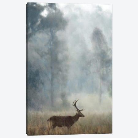 The Stag Canvas Print #KAJ130} by Katrina Jones Canvas Wall Art