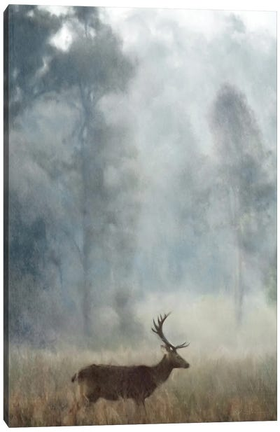 The Stag Canvas Art Print